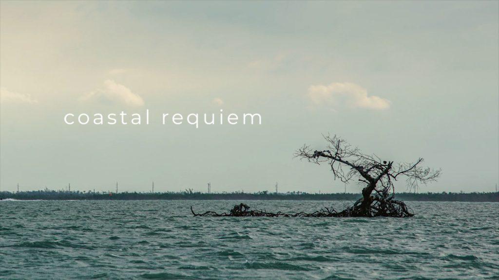 Coastal Requiem